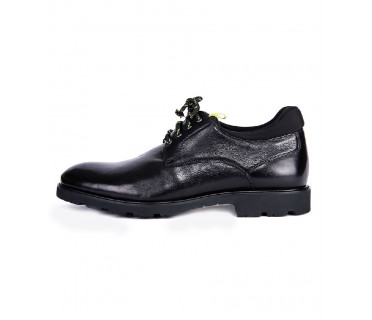 Туфли мужские арт. 04-D506-8620